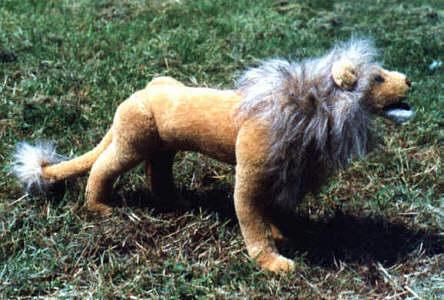 clarence der löwe
